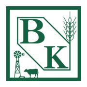 The Bank of Kremlin Logo